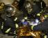 Attentats du 13 novembre : deux infirmiers sapeurs-pompiers en première ligne