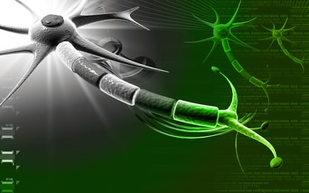 Sclérose Latérale Amyotrophique : Une cause identifiée ...