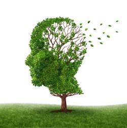 François Hollande annonce la prolongation du plan Alzheimer