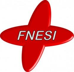 Passage de témoin à la présidence de la FNESI fédération nationale des étudiants infirmiers