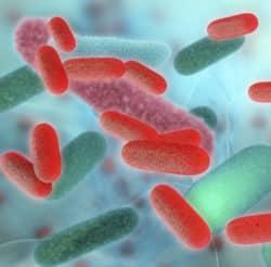Infections nosocomiales chez 7 % des patients en HAD Hospitalisation à Domicile