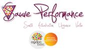 Sauve Performance Organisme de formation continue DPC en santé et en soins d'urgence.