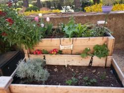 ©DR L'EHPAD Notre-Dame des Anges à Lorgues a mis en place des jardinières surélevées dans son jardin. Un aménagement facilitant le jardinage pour les personnes âgées.