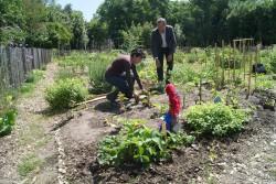 ©Ariane Puccini Dolorès Jimenez, l'infirmière et Gérald Carmona, président de l'association de quartier à l'origine du jardin partagé.