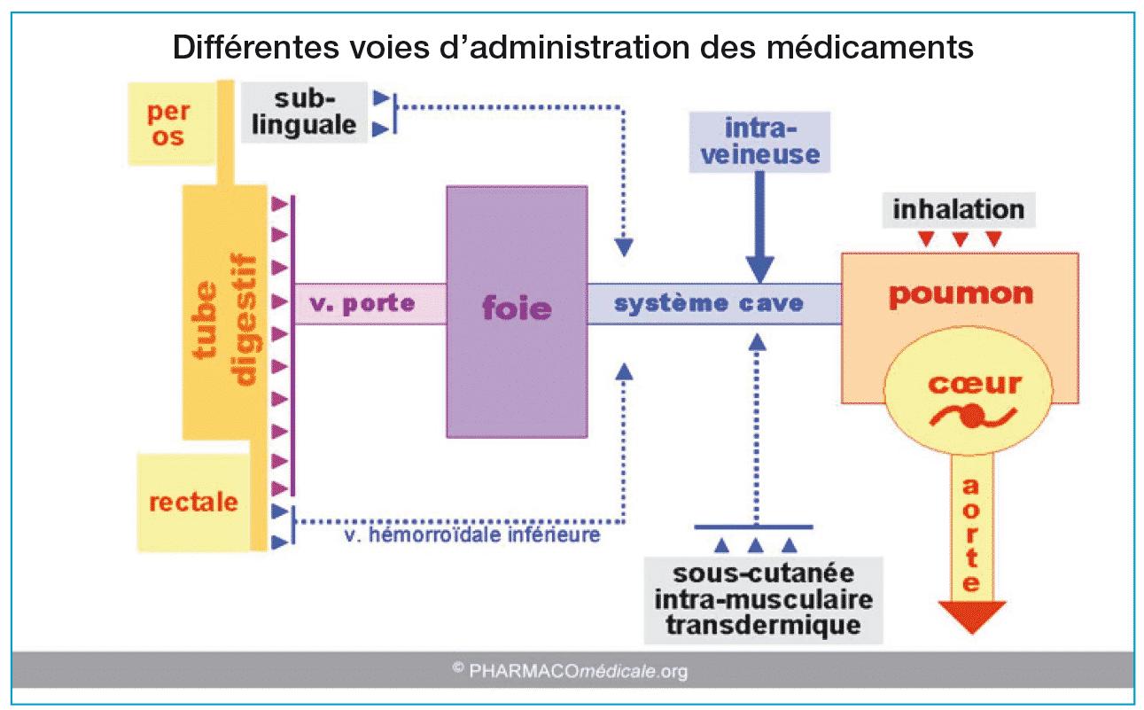 elimination medicament corps