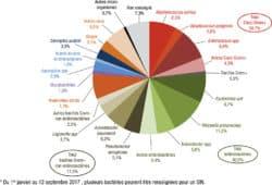 Infections nosocomiales : plus de 23 000 signalements externes depuis 2001